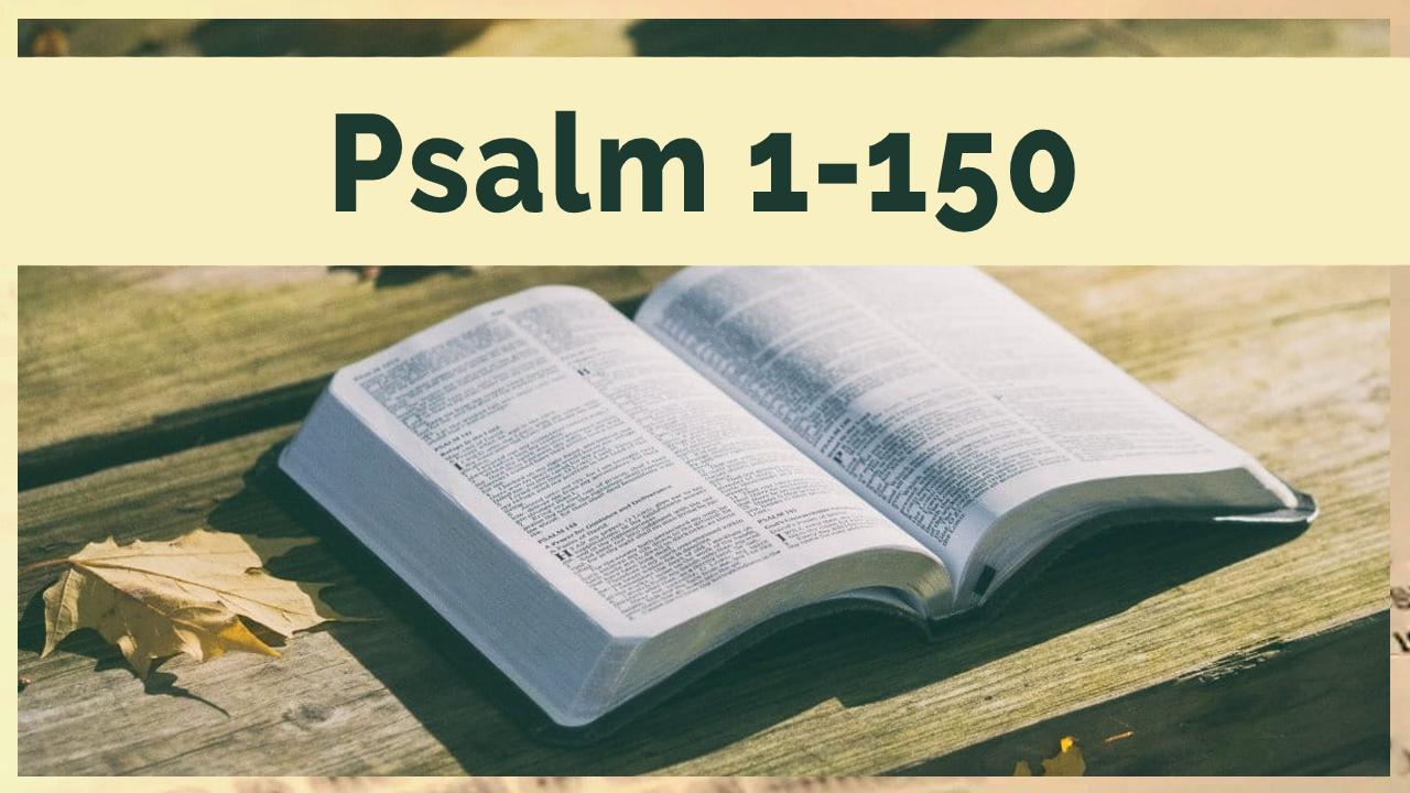 Daily Devotions - Psalms